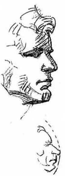 Голова располагается выше уровня глаз